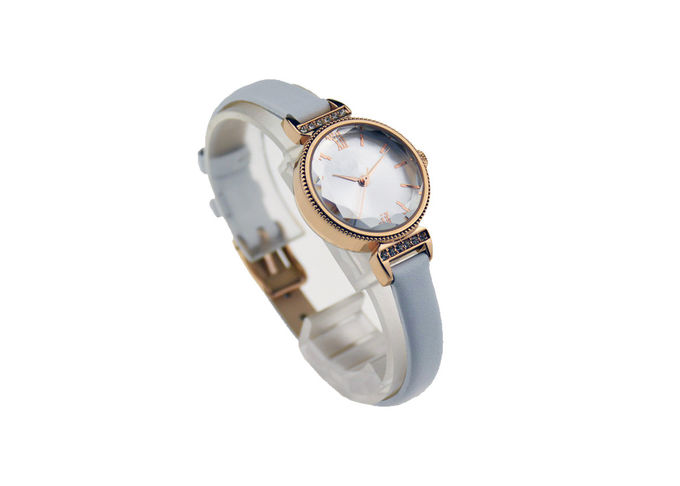 Ladies Alloy Anolog Watches Timeless With Stainless Steel Crown 3ATM